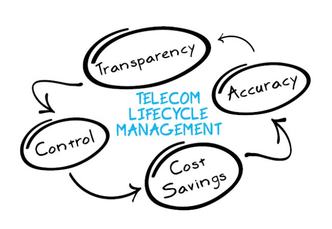 LifeCycle Graphic1